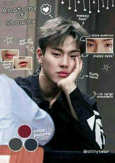 Monsta X Shownu, Jooheon, Kihyun, Hyun Woo, Forever Yours, Colour Pallete, Kpop, Puppy Eyes, Messy Hairstyles