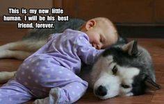 mejores amigos por siempre