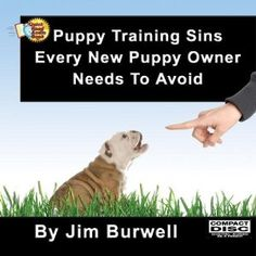 Struggling with Training Your Puppy ?  You Probably Skipped Step One.---    Oh sure, they talk to you about biting and nipping.  They might talk to you about crate training.    For sure, they don't tell you the really critical things you need to give your puppy to help him to become a happy, obedient dog.    And I'm not talking about food, water and a bed to sleep on.     I'm talking core things your puppy must receive from you so he can live in your human world.