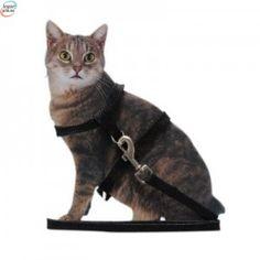 Turbånd Til Katten Din - Venn Din Katt Til Utendørslivet - Sort Eller Rød