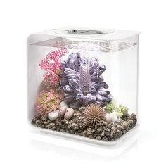 Bring your home to life with the awe-inspiring sights of this beautiful acrylic aquarium. From biOrb. Aquarium Stand, Aquarium Setup, Aquarium Kit, Aquarium Design, Aquarium Decorations, Aquarium Ideas, Betta Aquarium, Acrylic Aquarium