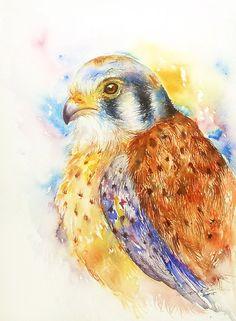 Hawk Eagle Bird Art Aquarellzeichnung Original von artiart auf Etsy