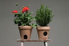 Image of Tiny Friends - Flower Pots by Wao – Valencia, Spain