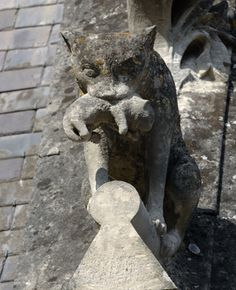 Cat with a kitten sculpture Gargoyle on the roof of the Château de Pierrefonds, France I Love Cats, Crazy Cats, Cool Cats, Potnia Theron, Street Art, Image Chat, Gremlins, Here Kitty Kitty, Green Man