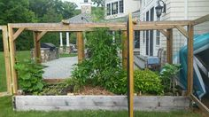 Our garden in Englewood is protected from critters with our signature fencing!