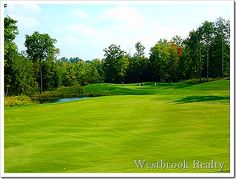 Tulleymore Golf Course Stanwood MI