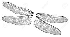 Awesome dragonfly wings clipart