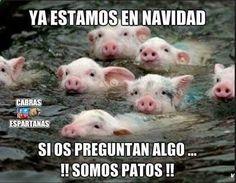 Tener buen humor #humor #chistes #risa #memes ☛ http://www.diverint.com/memes-chistosos-facebook-legado-asesino-pokemon