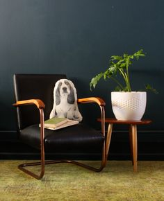 Animal Cushions, Basset Hound, Wingback Chair, Accent Chairs, Handsome, Friends, Shop, Animals, Furniture