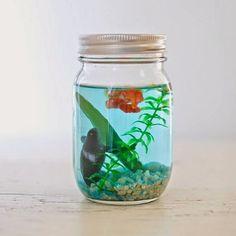 12 ideias para reaproveitar vidros de compotas, palmitos, etc... - Gosto Disto!