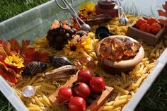 Autumn / Fall Preschool Sensory Bin - Great for our Fall / Apples theme! Pre-K Complete Preschool Curriculum uses Sensory Stations daily! Repinned by Pre-K Complete - follow our blog, FB, Twitter, and Google Plus.
