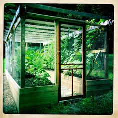 My husband built this amazing enclosed garden with raised beds by adding onto a trellis he had built a few years earlier. We needed a garden that would keep the deer out.