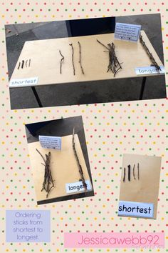 Ordering sticks from shortest to longest. Measurement Activities, Eyfs Activities, Nursery Activities, Hands On Activities, Book Activities, Maths Eyfs, Eyfs Classroom, Numeracy, Play Based Learning