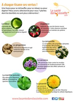 Fiche pratique - A chaque tisane ses vertus ! Health And Beauty, Health And Wellness, Sante Bio, Happy Vegan, Aromatic Herbs, Diet And Nutrition, Health Remedies, Healthy Tips, Natural Health