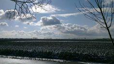 'De Beemster' North Holland, the Netherlands