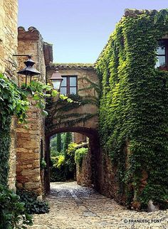 bluepueblo: Ivy Arch, Peratallada, Catalunya, Spain; photo via marta (via love-eternal25)