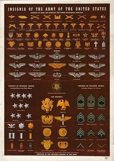 These are different military insignias of the United States. I could implement this into my work as I could use real insignias and ranking systems in my alternate universe, to make it more relatable to real life. Army Ranks, Military Ranks, Military Insignia, Military Weapons, Military Art, Military History, Navy Military, Military Police, Military Uniforms