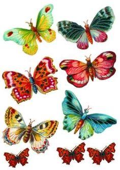 Schmetterlinge | Bastelfrau