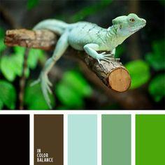 paleta-de-colores-300