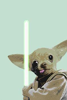 Harshness Star Wars Yoda Chihuahua Print