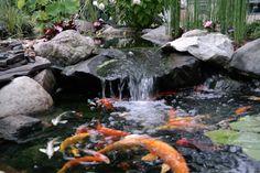 Waterfall created by Living Water Landscape Service in Battle Creek, MI.