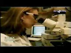 """Ossido Nitrico: La Molecola della Vita Nel 1998, tre scienziati sono stati insigniti del Premio Nobel per la Fisiologia e la Medicina per il loro lavoro sull'Ossido Nitrico. chiamata """"la molecola della vita""""."""