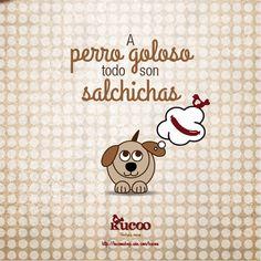 Perros vemos, corazones acogemos #RefranCaninoKucoo