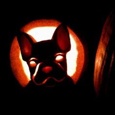 French bulldog pumpkin carving! Print out a pictures online, trace it and simplify the design onto computer paper, tape over your pumpkin, poke the outline, and carve!