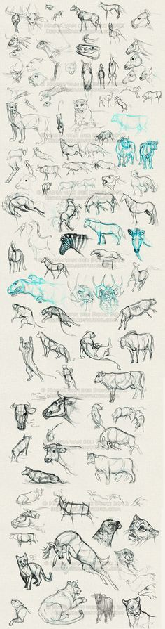 Sketchbook Dump 3 - XXL by *NadiavanderDonk on deviantART