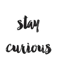 STAY CURIOUS Poster Motivational Quote Print Inspirational