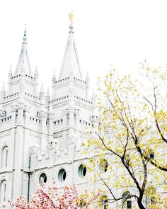 Cari Osborne Photography, LDS Temple Artwork, can also print for half price through her or download.