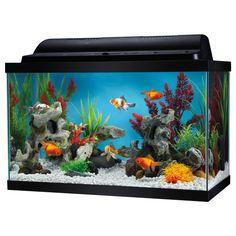 Top Fin 10 Gallon Aquarium Kit | Aquariums | PetSmart