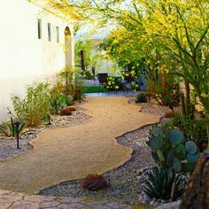 Awesome yard makeover - was a concrete driveway
