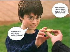 That s why the primary time Harry caught the snitch was Harry Potter Disney, Harry Potter Tumblr, Harry Potter Hermione, Images Harry Potter, Saga Harry Potter, Harry Potter Jokes, Harry Potter World, Anecdotes Sur Harry Potter, Lol