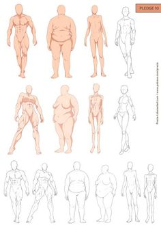 Fullbody types by precia-t on deviantart. fullbody types by precia-t on deviantart body reference, anatomy reference, figure drawing Anatomy Sketches, Body Sketches, Anatomy Drawing, Anatomy Art, Art Sketches, Art Drawings, Human Anatomy, Figure Drawing Reference, Anatomy Reference