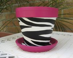 RESERVED FOR NZOLLERS ONLY 6 Hand painted 6 inch terra cotta flower pot with black and white zebra stripes and orange trim