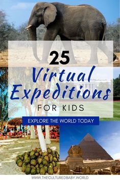 25 Virtual Expeditions for Kids: Explore The World Today Educational Activities, Learning Activities, Activities For Kids, Educational Websites, Educational Technology, Virtual Field Trips, Kids Education, Health Education, Education Quotes