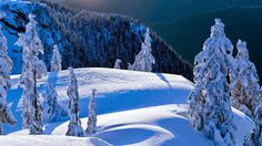 Mount Seymour Provincial Park, North Vancouver, British Columbia ...