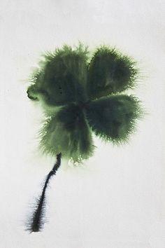 Lourdes Sanchez, four leaf clover 2013, watercolor