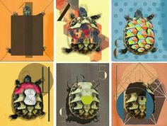 #graphicdedign#mywork#turtle#evolutionofclose#33X25cm