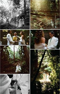 decided: having a forest wedding. Redwood Forest Wedding, Enchanted Forest Wedding, Woodland Wedding, Wedding Notes, Wedding Album, Wedding Things, Wedding Stuff, Perfect Wedding, Dream Wedding