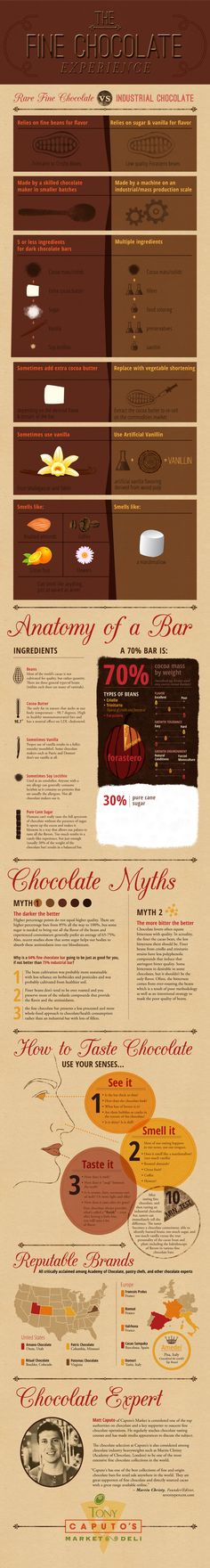 Fine Chocolate Experience Infographic from Caputos Deli SLC, UT