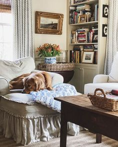 A warm mug of tea, watching the sun work its way across the dining room, a 90 pound lap dog and the final chapters of a book. Family Room Decorating, Interior Decorating, Interior Design, Decorating Ideas, Cozy Living Rooms, Living Spaces, Estilo Country, Cosy Room, Cozy Chair