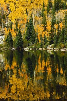 ✮ Calm waters of Bear Lake in Rocky Mountain National Park, Colorado reflect the mixture of golden aspens and evergreens along the shoreline
