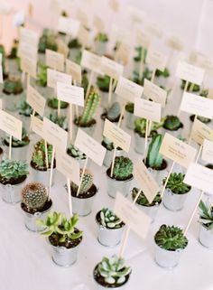 Inspirational Succulent Wedding Table Place Cards