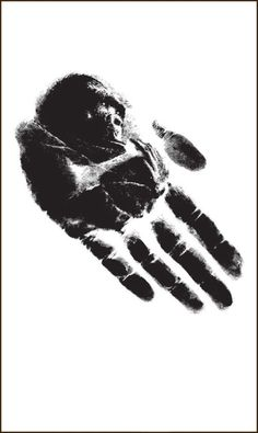 ☆ Gorilla Hand Optical Illusion :: Artist Unknown ☆