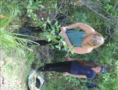 Finish your degree, plant a tree. year Naturopathy students plant 3 trees to represent their 3 years at Wellpark College Naturopathy, Student Studying, Homeopathy, Health And Wellbeing, Herbal Medicine, 3 Years, Natural Health, Herbalism, Therapy