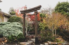 This garden has a distinctly asian feeling in it. It has natural stone work, timber and a very colourful planting palette. Asian Garden, Chinese Garden, Melbourne Garden, Stone Work, Landscape Design, Natural Stones, Bar Stools, Woodworking, Gardens