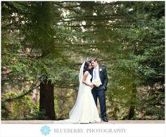 Brazilian Room Tilden Park in Berkeley outdoor wedding photography pine trees