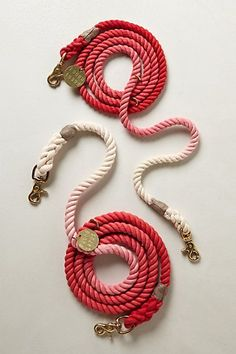 ombre leash #anthropologie